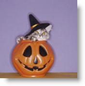 pumpkin-cat-1  Halloween Pagan Witchcraft Part 1 pumpkin cat 1